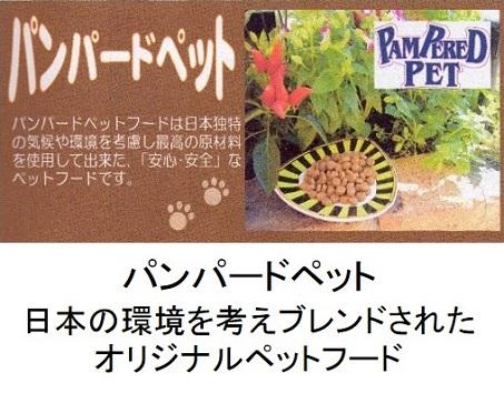 パンパードペットのトップページ