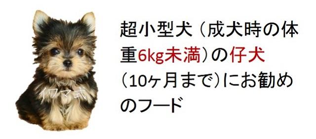 超小型犬(成犬時の体重6kg未満)の仔犬(10ヶ月まで)におすすめのフード