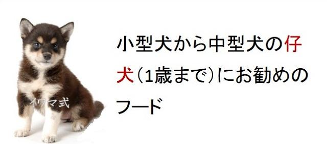 小型犬から中型犬の仔犬(1歳まで)におすすめのフード