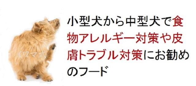 小型犬から中型犬で食物アレルギー対策や皮膚トラブル対策におすすめのフード