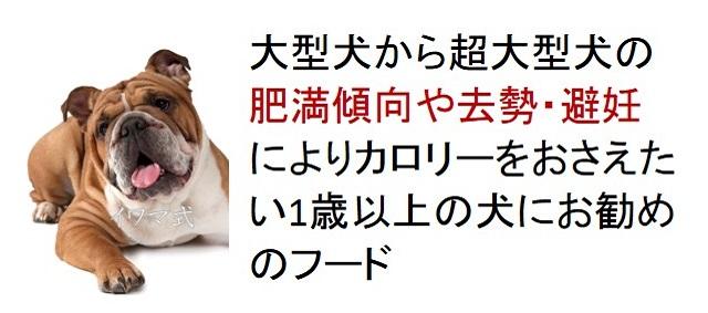 大型犬から超大型犬の肥満傾向や去勢・避妊によりカロリーをおさえたい1歳以上の犬におすすめのフード