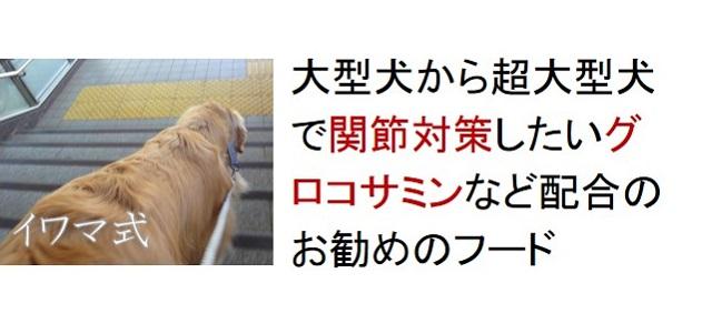 大型犬から超大型犬で関節対策したいグルコサミンなど配合