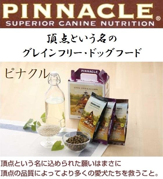 PINNACLE(ピナクル)