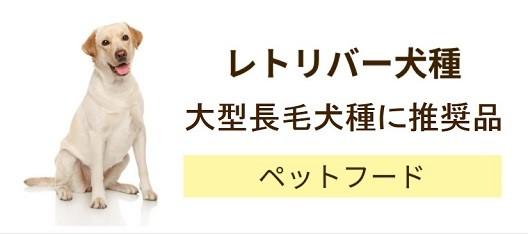 レトリバー犬種やスポーティンクグループ犬種・大型長毛犬種