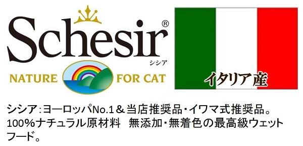 schesir(シシア)